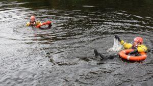 Chester Boat Emergency Training